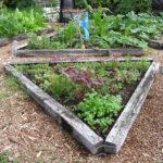 Šetříme vodou na zahradě – každá kapka se počítá