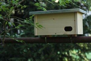 Ptačí budka pro rorýse na balkonové zábradlí ZD
