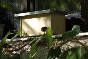 Ptačí budka na okenní parapet pro rorýse ZD