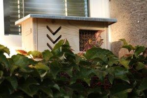 Hmyzí hotel na okenní parapet ZD