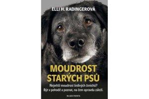 Moudrost starých psů: Největší moudrost šedivých čenichů?