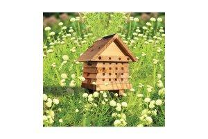 Včelky samotářky - dům pro snadné pozorování typ 2020