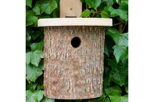 Ptačí budka - přírodní vzhled