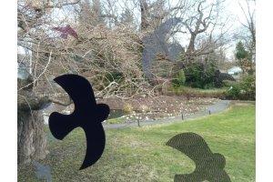 Ptačí siluety na sklo 9 ks - černé