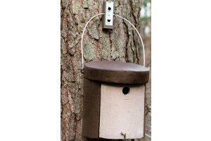 Ptačí budka 5 KL - pro brhlíky