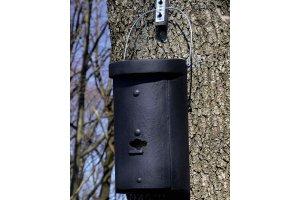 Budka pro velké kolonie netopýrů 1FS