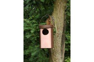 Ptačí budka 5 - pro sovy