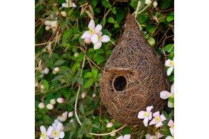 Ptačí budka – Brushwood – otvor 3 cm