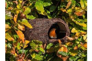 Ptačí polobudka Brushwood – pro červenky