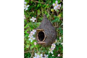 Ptačí polobudka - Brushwood