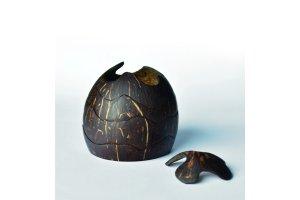 Skládačka z kokosu na záchranu mořských želv