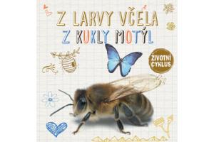 Z larvy včela, z kukly motýl - Životní cyklus